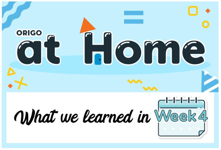 Week 4 What We Learned